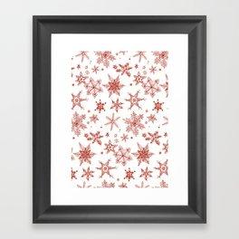 Snow Flakes 02 Framed Art Print