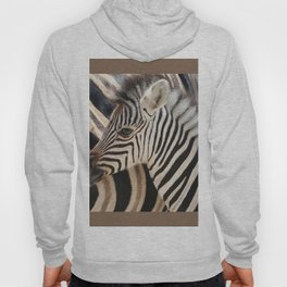 Zebra mother with Baby - wildlife Hoody