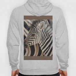 Zebra mother with Baby - wildlife Hoody