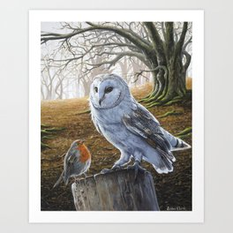 The Owl and the Robin - Acrylic Painting Art Print