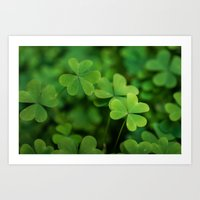 clover Art Prints featuring Clover by Michelle McConnell