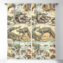 Reptiles by Adolphe Millot // XL 19th Century Snakes Lizards Alligators Science Textbook Artwork Blackout Curtain