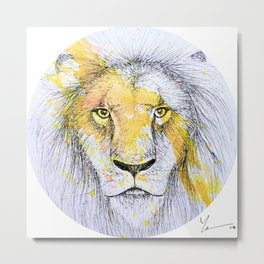 Lion II Metal Print