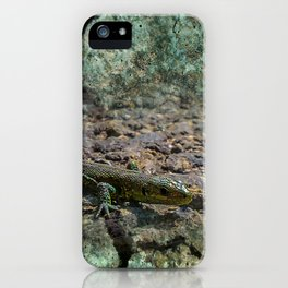 clausthal_6_texture1 iPhone Case