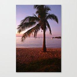 Magic on Magnetic Island Canvas Print