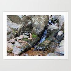 Upper Maxwell Falls in Autumn Art Print