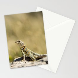Lizard At Attention Stationery Cards