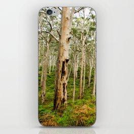 Boranup Forest, Boranup, Western Australia iPhone Skin