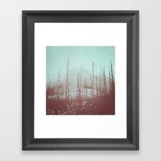 Burnt Winter Framed Art Print