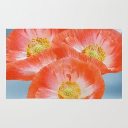 The beauty of poppies Rug