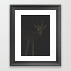 All lines lead to the...Springbok Framed Art Print