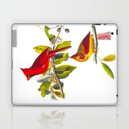 Cardinal Vintage Bird Illustration Laptop & iPad Skin