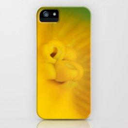 Zucchini Flower iPhone Case