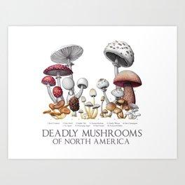 Deadly Mushrooms of North America Art Print