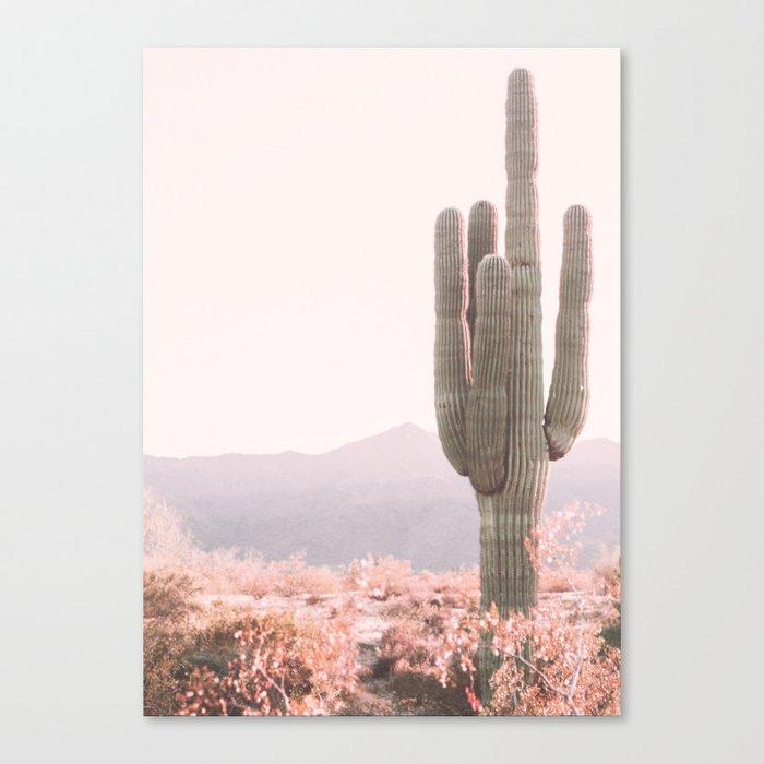 Vintage Cactus Leinwanddruck