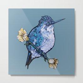 L'il Lard Butt Bee Hummingbird on Mallow flower Metal Print