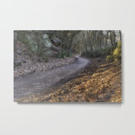 Through the Cutting Metal Print