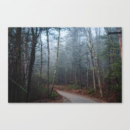 Fog in the Trees Canvas Print