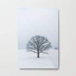Frozen Tree Metal Print