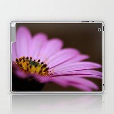 One Purple Daisy Laptop & iPad Skin