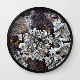 Smattering of Lichens Wall Clock