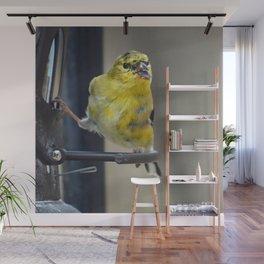 Goldfinch Wall Mural