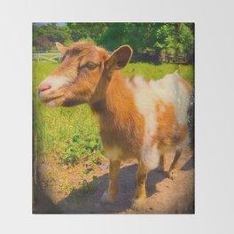 Nigerian Dwarf Goat Throw Blanket