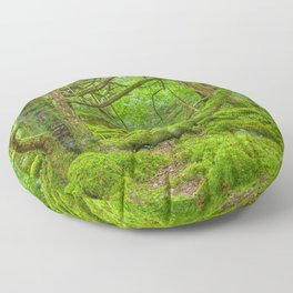 Emerald Forest Floor Pillow