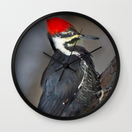 Winter Pileated Wall Clock