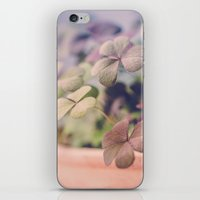 clover iPhone & iPod Skins featuring Clover by Juste Pixx Photography