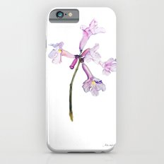 Flowers of the tree *Handroanthus sp* iPhone 6s Slim Case