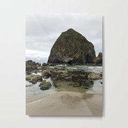 Haystack Rock Marine Garden Metal Print