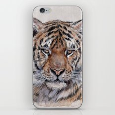 Tiger 779 iPhone & iPod Skin