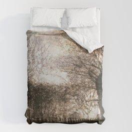 Vessey Street Sunset Comforters