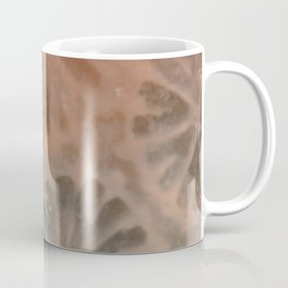 Agatized Coral Filtered Coffee Mug