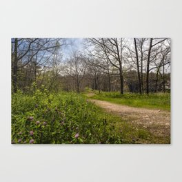 Troubled summer woods Canvas Print