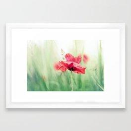 So terribly beautiful... Framed Art Print
