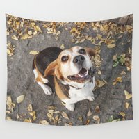 beagle Wall Tapestries featuring Beagle by Renata's Photobox