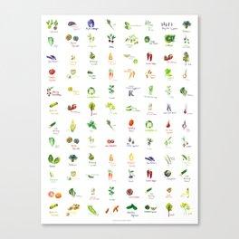 Produce Palette Canvas Print