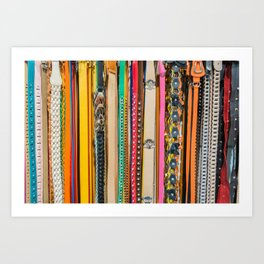 Fashion Belts Art Print