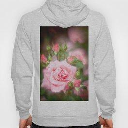 Rose pink Hoody