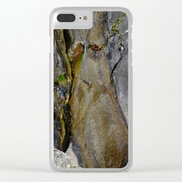 Waterfall mimetolit Clear iPhone Case