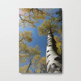 Golden Aspen, La Sal Mountains Metal Print