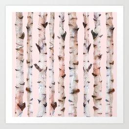 Birch Trees Pink Art Print