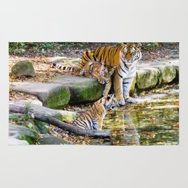 Lessons Of Life Mother Tiger And Cubs Rug