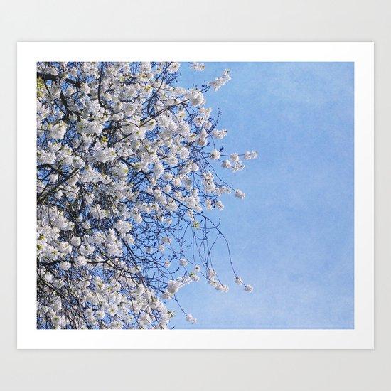 my spring Art Print