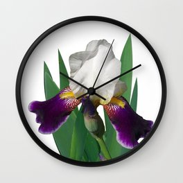 Violet and white Iris 'Wabash' Wall Clock