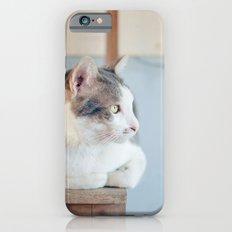 My Cat iPhone 6s Slim Case