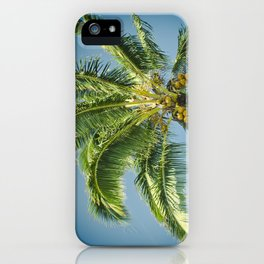 keanae hawaiian coconut palm iPhone Case