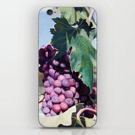Volpaia iPhone Skin